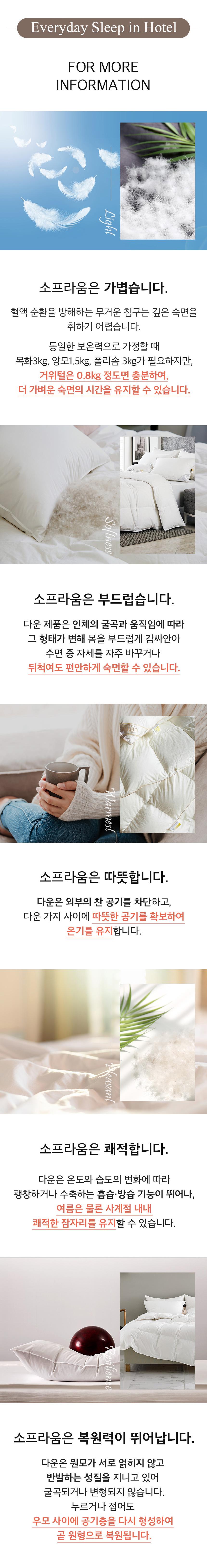 main_05.jpg